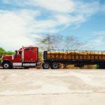 Perishables Logistics Continues to Boom in Latin America during 2019